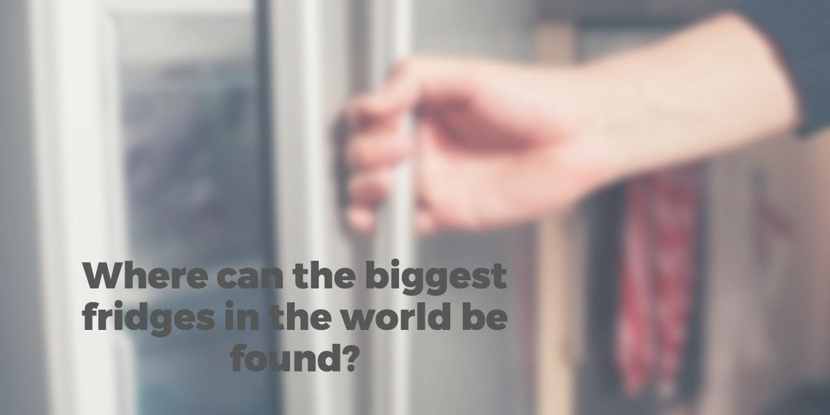 Worlds biggest fridges - mtcss