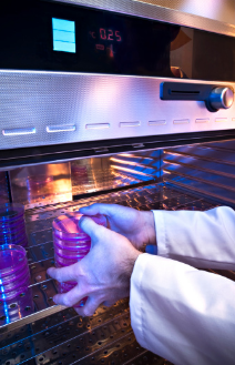 Cold Storage Solutions For The Pharmaceutical Amp Medical