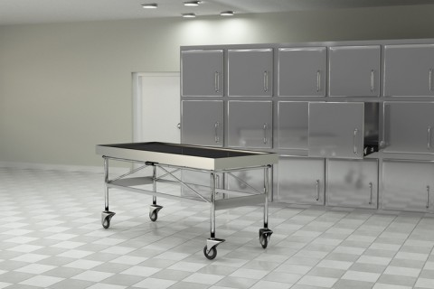 Morgues & Funeral Homes Cold Storage
