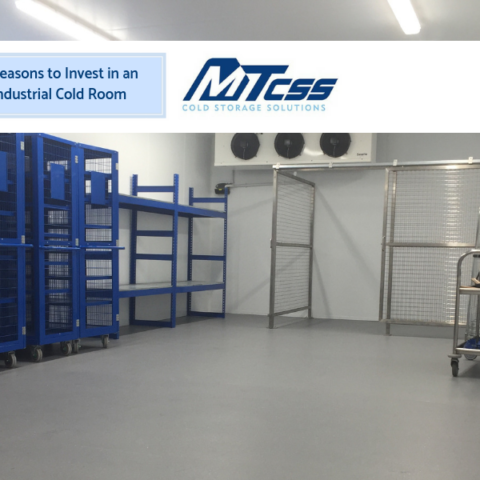 5 Reasons to Invest in an Industrial Cold Room - MTCSSS