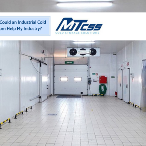 How Could an Industrial Cold Room Help My Industry? | MTCSS